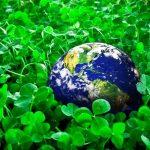 «ЕкоФорум-2021»: власним прикладом підтримуємо екологічне ведення бізнесу